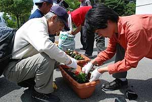 富士見の景観のためみんなで花を植えました(4Hクラグ)