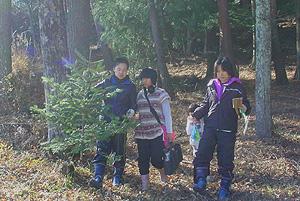 里山の恵み ~ 養護学校のこどもたちがクリスマス用のモミの木を取りにきました~