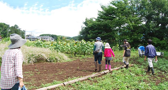 富士見高校養蜂部 夏の収穫&人形作り&アイス作り 開催レポート(2015.8.18開催)